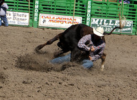 2016 Livermore Rodeo